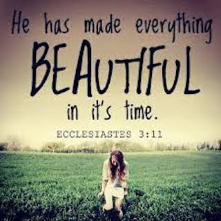 Ecclesiastes 3 – The Futility of being Self-Absorbed & The